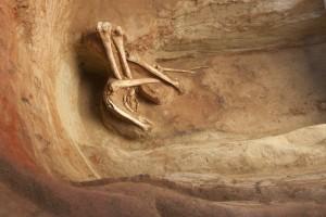 Zličínský Dvůr – lidské kosterní nálezy